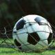 Украинский футбол может ждать очередной скандал: 12 матчей донецкого «Олимпика» под подозрением УЕФА