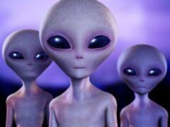 Контакт с инопланетянами может быть опасен — ученые