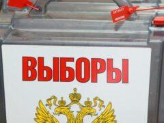 Новая норма закона: наблюдателей на выборах смогут удалять с участков только по решению суда