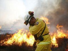 Лесные пожары в Канаде: эвакуировано около 8 тысяч человек
