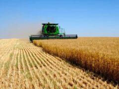 Беларусь: хозяйственное общество сможет создать один участник