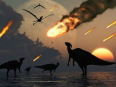 Названа точная дата падения метеорита — «виновника» последнего оледенения