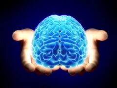Ученые смогли синхронизировать два человеческих мозга через сеть интернет