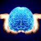 Учёные: злые люди отличаются от добрых людей маленьким мозгом
