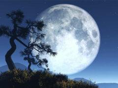 НАСА: В лунной атмосфере есть неон