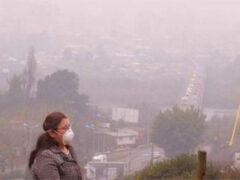 Создан алгоритм для определения загрязненности воздуха по фотографии