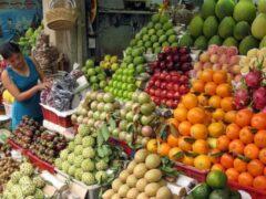Мексика начинает поставки в Россию овощей и мяса