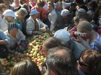 раздача яблок