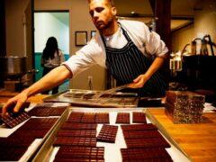 Изучение лецитина позволит улучшить вкус шоколада — заявили ученые