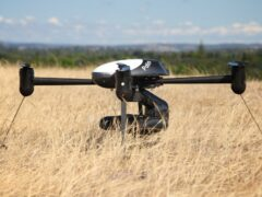 Лебеди помогут разработать новейшие камеры для беспилотников