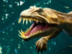 В Австралии были найдены останки динозавра «Коготь-молния»