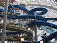Петербург: 49-летний турист из Индии скончался в очереди в аквапарк «Питерленд»