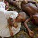 Ученые: Постройка плотин в Африке грозит населению вспышками малярии