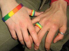 Опрос: негативно к секс-меньшинствам относятся 33% жителей Саранска