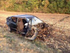 На Кубани в ДТП с иномарками погибли 4 человека
