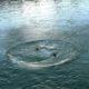 В Астрахани пропал подросток, спрыгнувший с моста в воду
