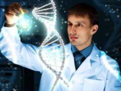 Ученые: Определенные метки в ДНК показывают предрасположенность человека к гомосексуализму