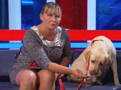 СК проверит данные об угрозах слепой певице, у которой украли собаку