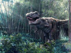 Исследователи по скорлупе яиц динозавров вычислили их температуру тела