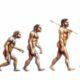 Эволюция человека и роль пубертатного периода в ней