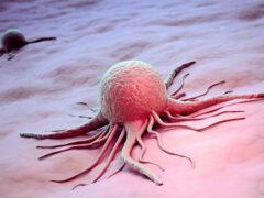 Ученые: Уровень смертности от рака по всему миру растет