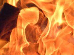 На трассе в Оренбургской области загорелся пассажирский автобус