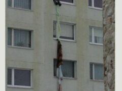 В Петербурге на проспекте Просвещения подросток сорвался с 4-го этажа