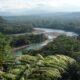 Эксперты: В бассейне Амазонки скоро исчезнут многие редкие деревья