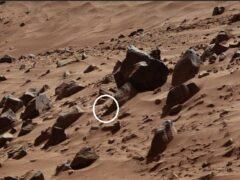 Уфологи нашли на Марсе пирамиды и голову фараона