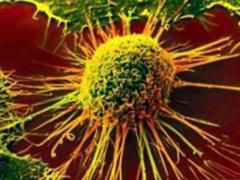 Китайские ученые научились проделывать отверстия в раковых клетках