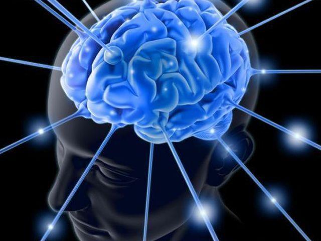 Неврологи из Оксфорда утверждают что уровень человеческой апатии или иными словами человеческой лени зависит от структуры человеческо
