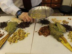 В Америке китайские лекарственные травы будут выращивать фермеры