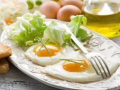 Ученые: ежедневное употребление яиц не вызывает болезней сердца