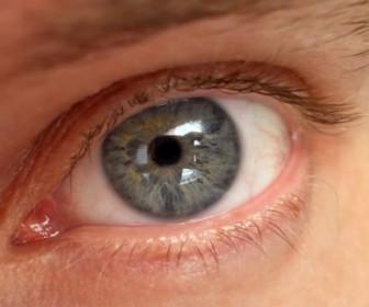 глаз зрение