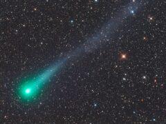 В январе 2016 года мимо Земли пролетит необычная комета «Каталина»