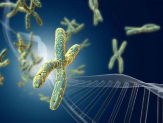 мутации рака