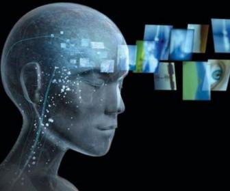 мозг человек картинки