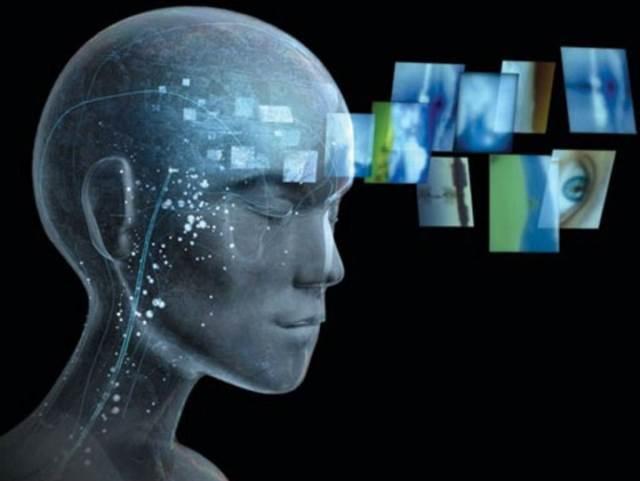 Ученые: Способность к обучению иностранным языкам зависит от особенностей мозга