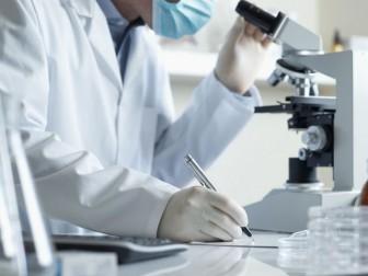 исследования ученые
