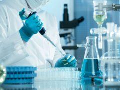 Эффективность вакцины от гриппа зависит от этнической принадлежности пациента