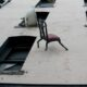 В Петербурге мужчина выбрасывал вещи из квартиры на пятом этаже