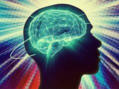 Ученые нашли в мозге человека механизм отключения удовольствия