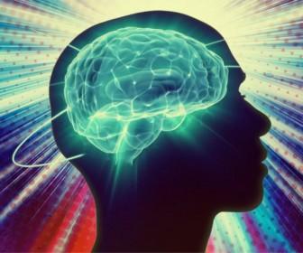 активность мозга