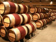 Виноделы Греции впервые в истории устроили забастовку