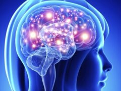 Ученые: Формирующая эмоции структура мозга наследуется дочерью от матери