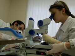 Ученые нашли способ производить тромбоциты в лабораторных условиях