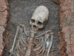 Ученые: «Инопланетянке» из Аркаима специально деформировали череп