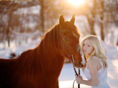 Лошади оказались способными «читать» эмоции человека