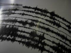 Землетрясение магнитудой 5,0 произошло в Бурятии