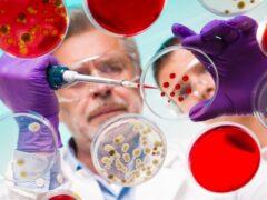 Учеными разработан альтернативный метод борьбы с инфекциями